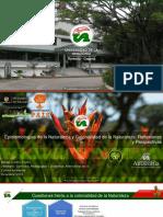 Epistemologías Naturaleza.pdf