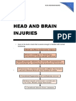 Head and Brain Injuries