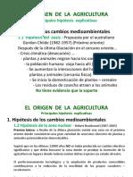Hipótesis Del Origen de La Agricultura