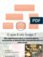 Aula_fungos_2018.pdf