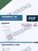 Vg Fluid 02 05 Magnesium Mg