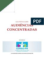 Guia Prático Sobre Audiencias Concentradas