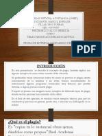 Guía Sobre Las Normas Apa