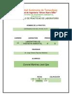 Practica_N°3_Coronel_Martinez_Lab_Ambiental_2019.1