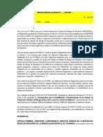Modelo de  Resolución Alcaldia de Conformacion Grupo de Trabajo