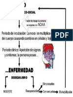 Ciclo de La Enferemdad
