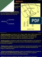 Modelos mineralizacion
