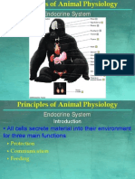 07 Animal Physiology - Endocrine System