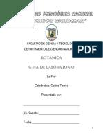 Guías de Lab. Botánica Flor Rev