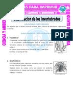 ANIMALES INVERTEBRADOS.pdf