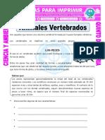 ANIMALES VERTEBRADOS.pdf