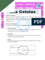 PARTES DE LA CELULA.pdf