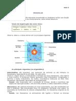 Biologia_Aula_03_(4586)