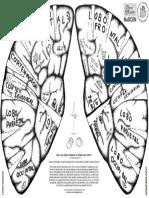 CAPACETE-DO-CEREBRO-A3-FRENTE-2A-VERSAO.pdf
