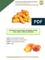 recopilacion olluco.pdf