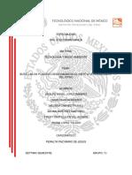 Tecnologia y medio ambiente- botes de plastico.docx