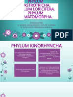 PHYLUM KINORHYNCHA.pptx