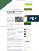 Recomendaciones Para La Conservación de Las Vides Para Injertar - Campo Gale2go