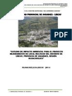 Estudio de Impacto Ambiental HUAYLLAY GRANDE