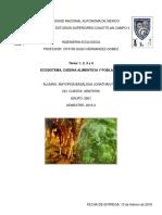 Ecosistema, Cadena Alimenticia, Poblacion