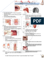Ent Diseases of the Oral and Pharynx Dr. Uy
