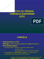 Infectia Cu Virusul Varicelo-zosterian