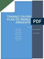Trabajo Grupal Plan Ambiental.docx
