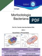Aula 1 - Morfo-Citologia Bacteriana