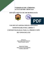 60880779.pdf