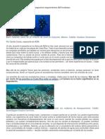 los arrecifes de coral y los impactos imprevistos del turismo-practica final