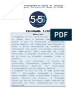 Cartilha 5+5S