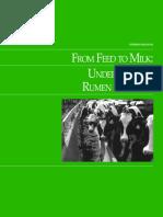 RumenFunction.pdf