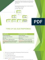 2 d Electrophoresis 1 Converted Copy