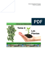 5_CCNN_TEMA2.pdf