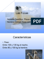 lafocas-111114102551-phpapp01