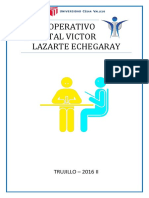 PLAN-OPERATIVO-HOSPITAL-LAZARTE.docx