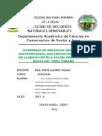 UNIVERSIDAD NACIONAL AGRARIA DE LA SELVA.docx