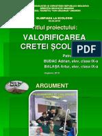 Reciclarea Cretei Scolare Proiect Ecologie