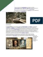 Naturalista Contractulista Organista Eclesiastica.docx