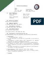 Modelo de Informe 2