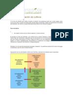 Criterios de Rotacion de Cultivos