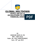 Global Meltdown Final Report