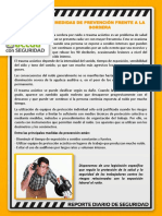 290119 Reporte Diario SSO (1).pdf