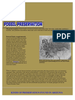 Fossil Preservation