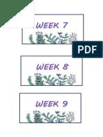 Weekly Divider