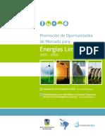 GUIA DE EVALUCACION EMPRESAS ESCO.pdf