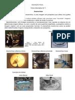 Ficha Info Anamorfose PDF