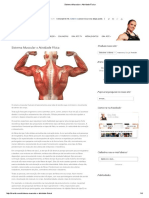 Sistema Muscular x Atividade Física.pdf