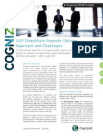 SAP Divestiture Projects Options Approach and Challenges