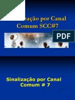 SCC_7